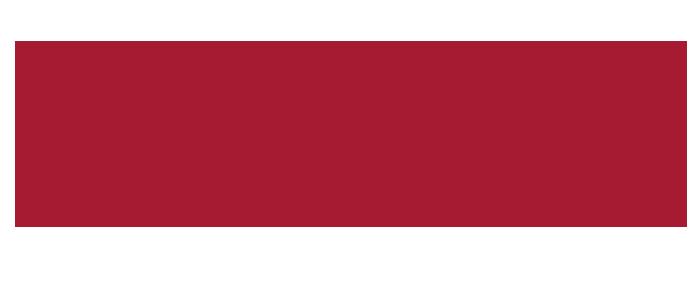 Sillas electricas para Adultos Mayores y Discapacitados